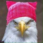 eagle-in-a-pink-pussy-hat